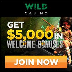 Wild Casino Banner